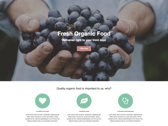 Web Design Layout Fresh Organic